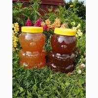 Мёд Алтайский. Урожай 2020 года