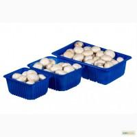 Производим и продаём лотки для упаковки и сбора шампиньонов ( 250, 500 и 1000 грамм)