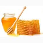 Продам мед Крымский 2017-го года с личной пасеки оптом и в розницу