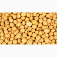 Соя очищенная протеин от 39%