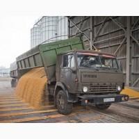 Перевозка пшеницы, ячменя, сои, кукурузы зерновозами
