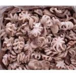 Продажа осьминогов молодых оптом