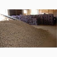Картофель калиброванный оптом со склада