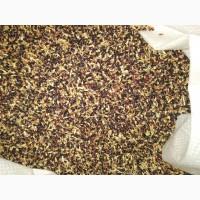 Семена суданки, люцерны, эспарцета