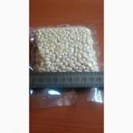 ᐉ 2017 ОРЕХИ КЕДРОВЫЕ Купить Оптом Цена КГ! Лицензия на Экспорт Орехи Квота в Китай