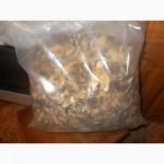 Продам гриб весёлку