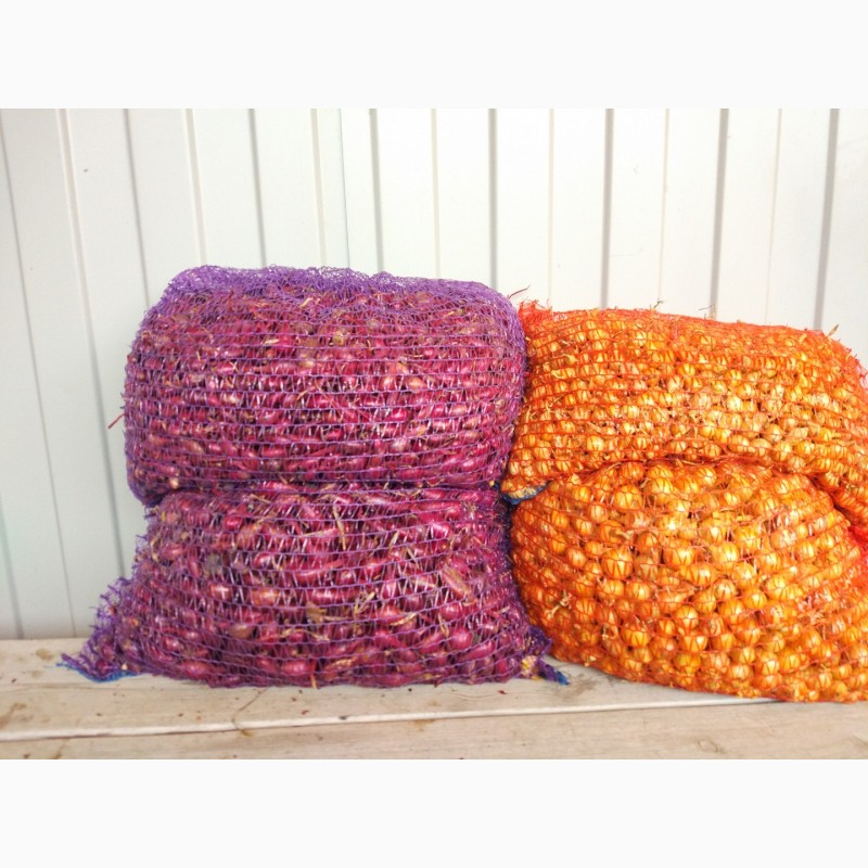 продам лук севок оптом белгород