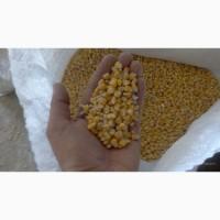 Кукуруза фуражная оптом, саратовская обл, самовывоз