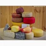Натуральный полутвёрдый сыр