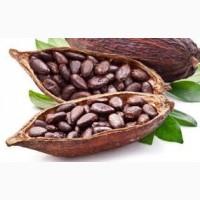 Оптовой продаже какао бобы
