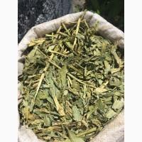Кипре трава(Иван чай)