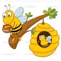 Продам гречишный мед