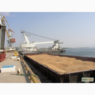 Ячмень с поставкой на Иран в порт Амирабад