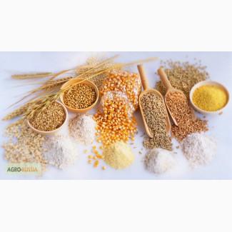 Крупы весовые в мешках по 50кг - греча, рис, пшено, горох, пшеничка, перловка, манка, ячка