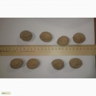 Продам цельный грецкий орех