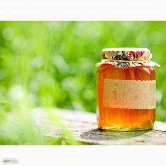 Продаём мёд крупным оптом.Экспорт и Россия