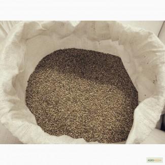 Семена конопли технической