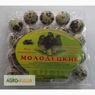 Яйца перепелиные Молодецкие Потребительская упаковка 20 шт