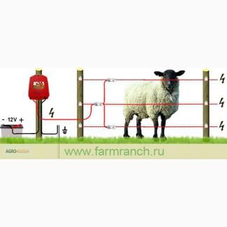 Электропастух для свиней купить в москве