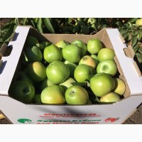 Скупка яблок оптом калуга