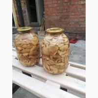 Продаю белый соленые грибы маслята