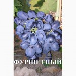 Продам черенки столовых и технических сортов винограда