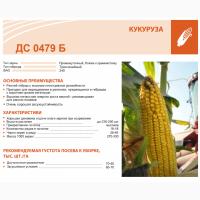 Купить семена кукурузы ДС 0479 Б по низкой цене