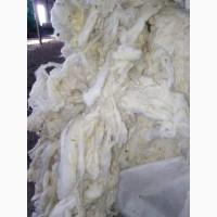 Продам шерсть овечью мытую