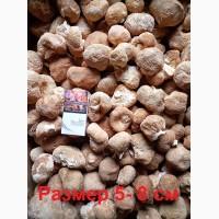 Ежевик гребенчатый - гриб Гериций (Ямабуши)