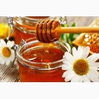 Куплю Воск пергу и другие продукты пчеловодства