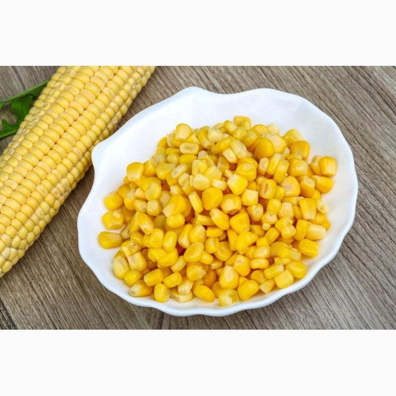 кукуруза зерно купить в москве в розницу