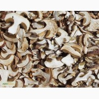 Продаю сухой белый гриб
