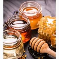Ищу поставщиков Мёда и продуктов пчеловодства РФ