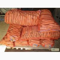 Морковь оптом по 8 р