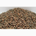 Семена вики озимой (мохнатой). Урожай 2016 года
