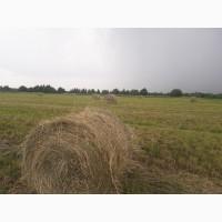 Продаем высококачественное сено/сенаж с первого укоса. Прием заявок
