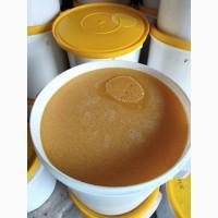 Продам мёд оптом со своей пасеки