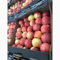 Яблоки Краснодарские