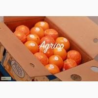 Апельсины сладкие