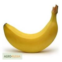 Купим Бананы от 20 тонн