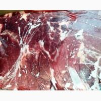 Куплю говядину, блочную, 1 сорт, бескостную