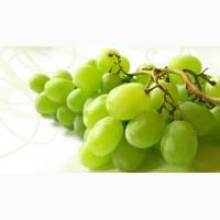 Крымский виноград опт и мелкий опт