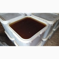 Цветочный мёд с гречихой 2021г. с личной пасеки в Башкирии