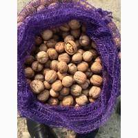 Продам орех грецкий урожай 2017года