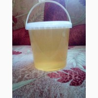 Продам мёд из Уссурийской тайги