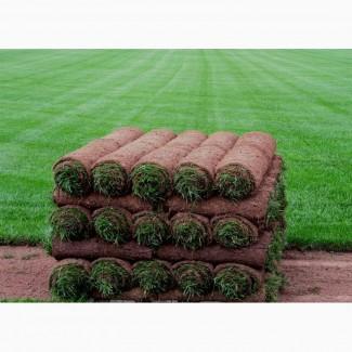 Рулонный газон Спортивный от 130 руб/рулон