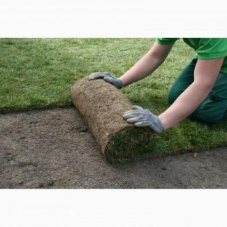 Рулонный газон Стандартный от 98 руб/рулон