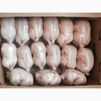 КОРНИШОНЫ (тушка цыпленка) 3-х калибров охл/зам со склада М