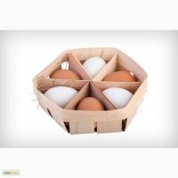 Эко лотки для куриных яиц