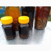 Настойка на личинках восковой моли(Огневка)